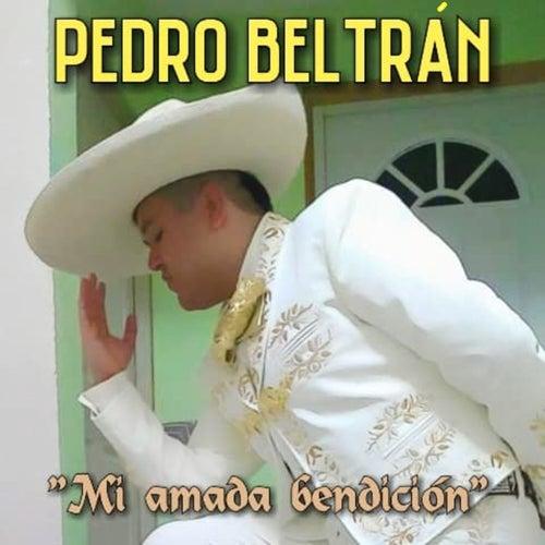 Mi Amada Bendición de Pedro Beltrán