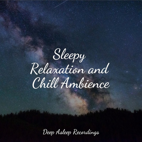 Sleepy Relaxation and Chill Ambience de Ambient Music Therapy