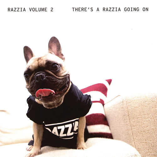 Razzia vol 2 - There's A Razzia Going On by Various Artists