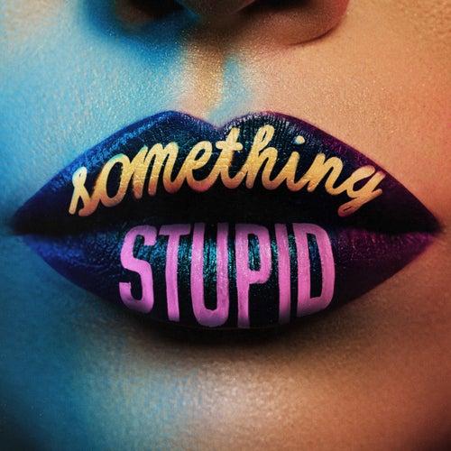 Something Stupid by Jonas Blue