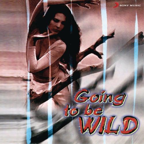 Going To Be Wild de Sonu Nigam