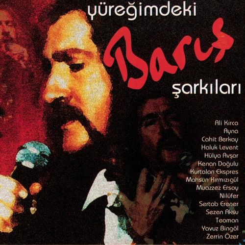 Yuregimdeki Baris Sarkilari by Various Artists