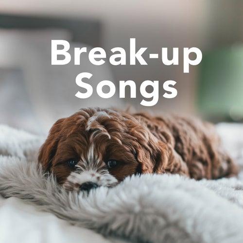 Break Up Songs by Various Artists