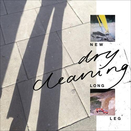 Strong Feelings de Dry Cleaning