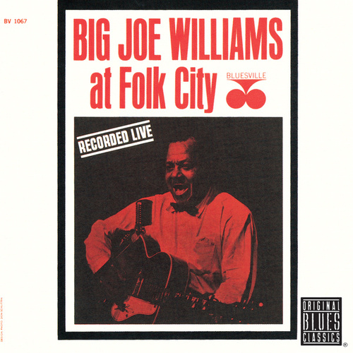 At Folk City de Big Joe Williams