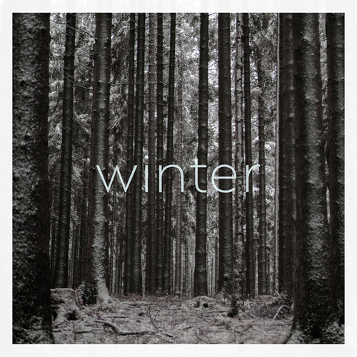 Vier Jahreszeiten - Winter (dyrtbyte Remix) by DyrtByte