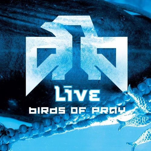 Birds Of Pray de LIVE