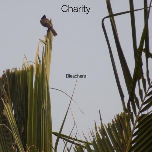 Charity de Bleachers
