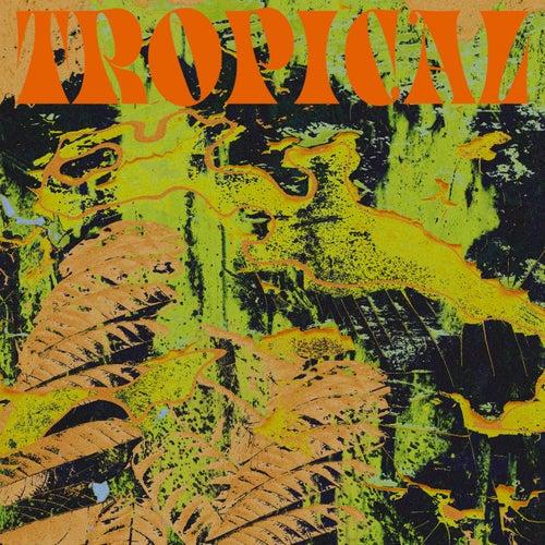 Tropical von CV Vision