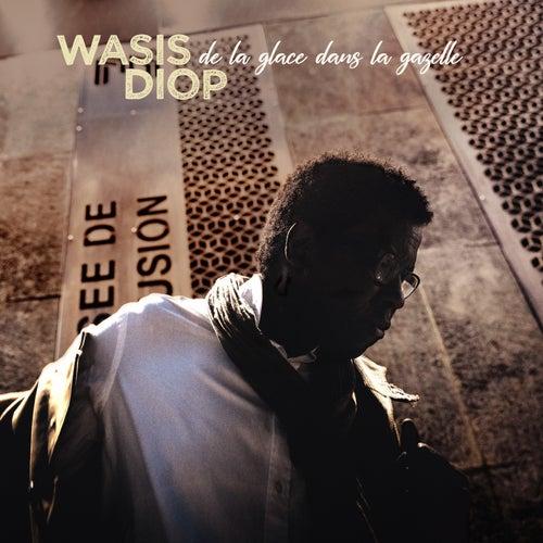 De la glace dans la gazelle by Wasis Diop
