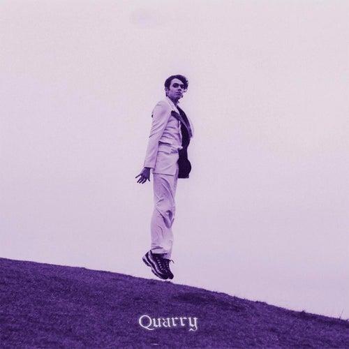 Wake Me Up fra Quarry