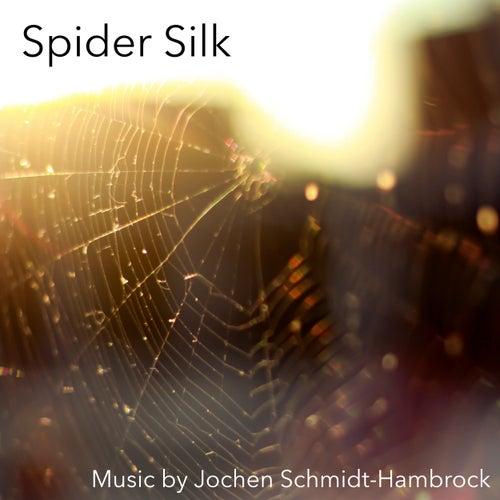 Spider Silk (Production Music) von Jochen Schmidt-Hambrock
