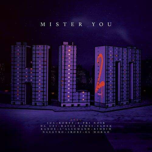 HLM2 de Mister You