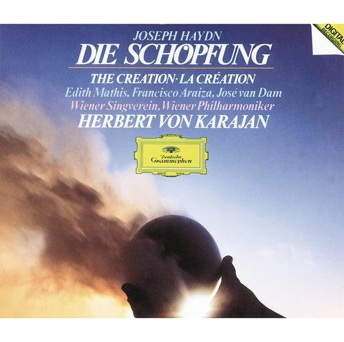 Haydn: Die Schöpfung by Wiener Philharmoniker