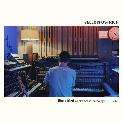 River '93 by Yellow Ostrich