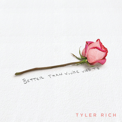 Better Than You're Used To by Tyler Rich