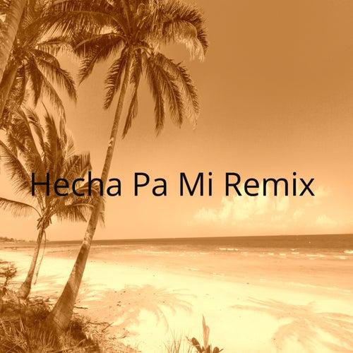 Hecha Pa' Mi Remix by Dance Monkey