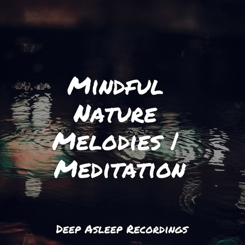 Mindful Nature Melodies | Meditation by Sleeping Baby Songs