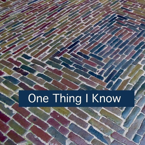 One Thing I Know (feat. The Potion Kings) by Sue Smith