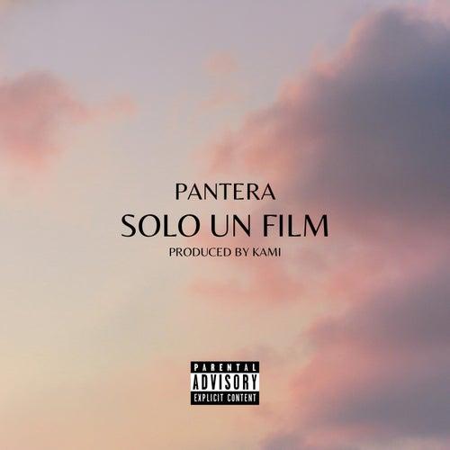 Solo un film fra Pantera