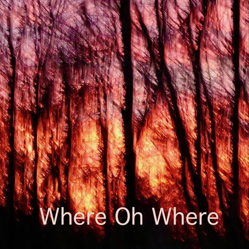 Where Oh Where (feat. The Potion Kings) by Sue Smith