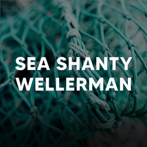 Sea Shanty Wellerman by Various Artists
