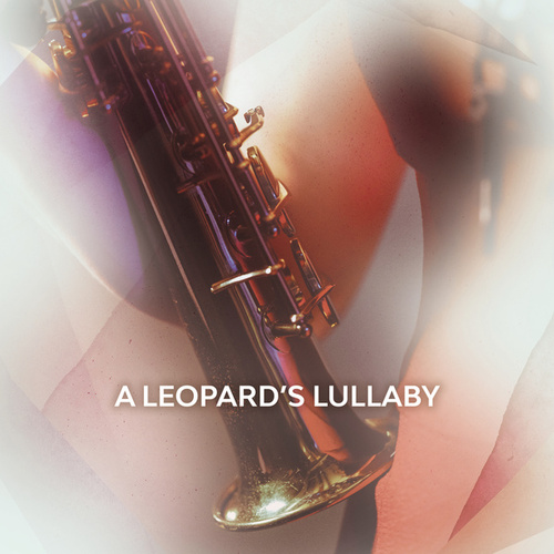 A Leopard's Lullaby by Amy Dickson