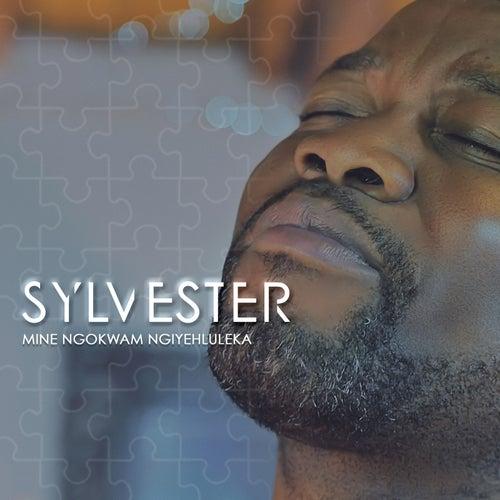 Mine Ngokwam Ngiyehluleka fra Sylvester