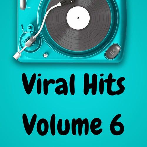 Viral Hits Volume 6 de Various Artists