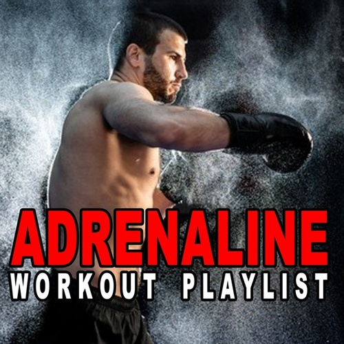 Adrenaline Workout Playlist (The Ultimate Uptempo Playlist to Pump up the Motivation to the Max) de Various Artists