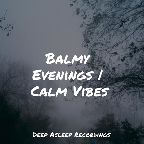 Balmy Evenings | Calm Vibes by Massage Music