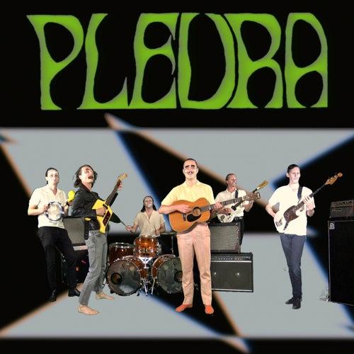 Pleura by King Gizzard & The Lizard Wizard