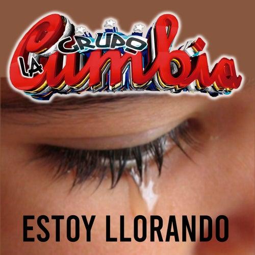 Estoy Llorando by Grupo La Cumbia