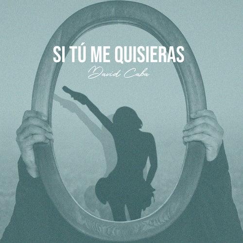 Si Tu Me Quisieras (Cover) de David Caba