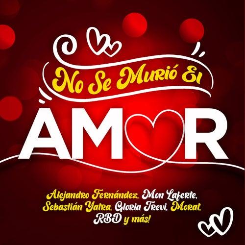 No Se Murió El Amor de Various Artists