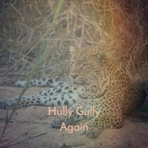 Hully Gully Again by Various Artists