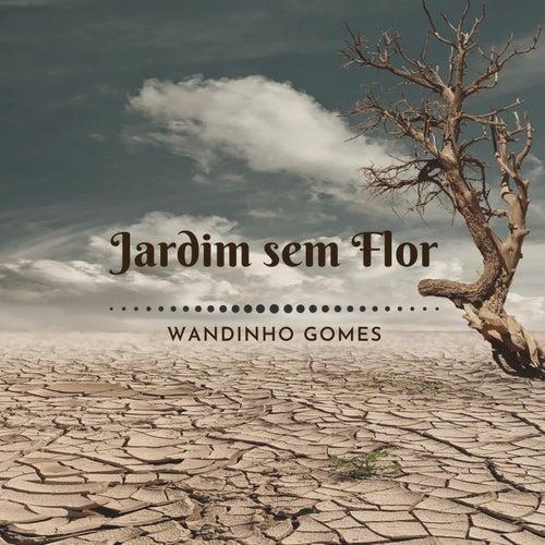 Jardim Sem Flor de Wandinho Gomes