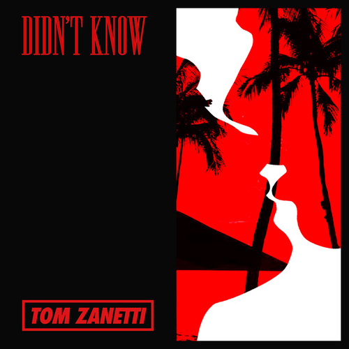 Didn't Know by Tom Zanetti