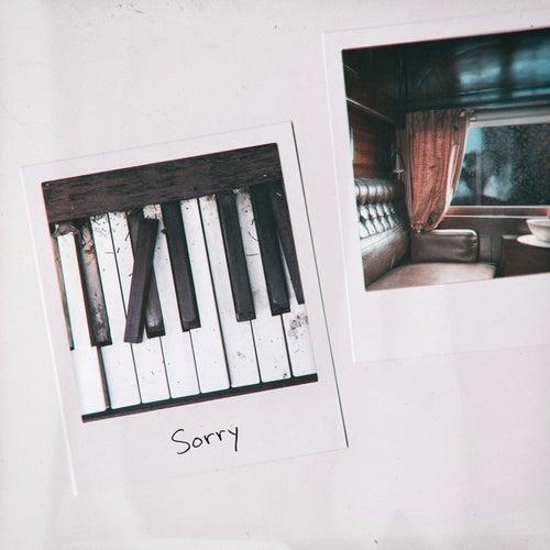 Sorry by Alex Kehm