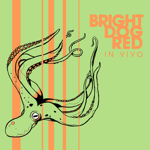 We Ain't Gotta by Bright Dog Red