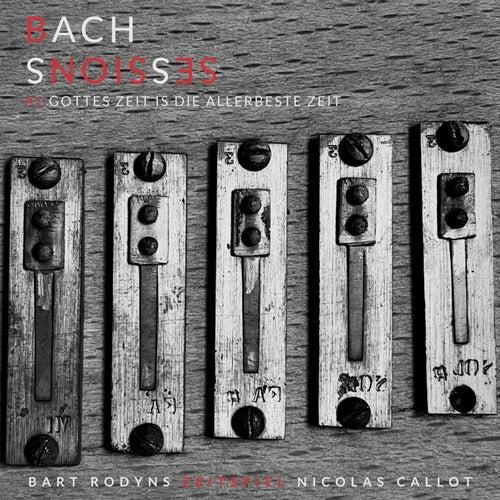 J.S. Bach: Gottes Zeit ist die allerbeste Zeit, BWV 106 by Nicolas Callot