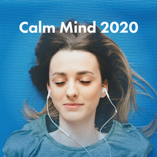 Calm Mind 2020 de Various Artists