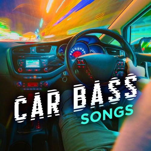 Car Bass Songs von Various Artists
