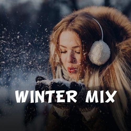Winter Mix von Various Artists