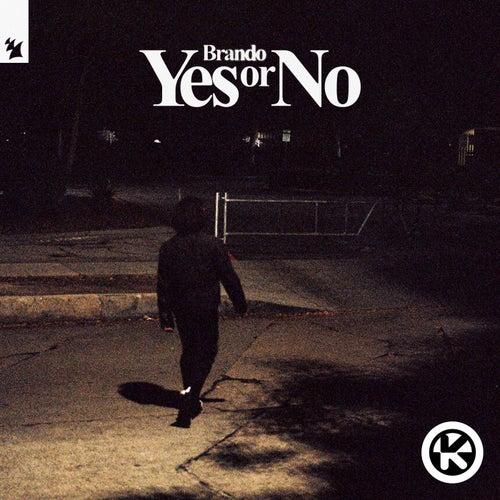 Yes or No von Brando