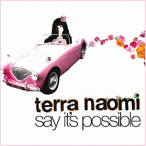 Say It's Possible by Terra Naomi