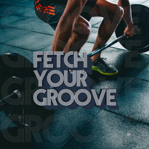 Fetch Your Groove by Various Artists