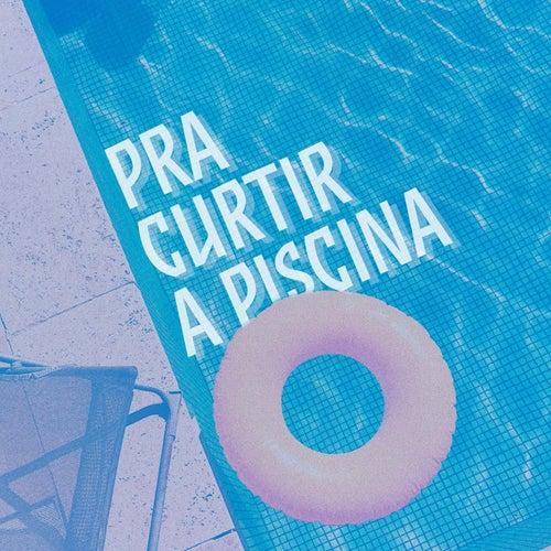 Pra Curtir a Piscina de Various Artists