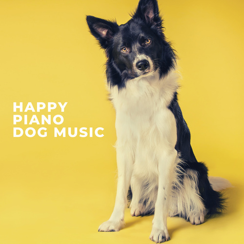 Happy Piano Dog Music by Pet Music Therapy
