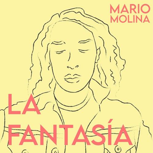 La Fantasía by Mario Molina